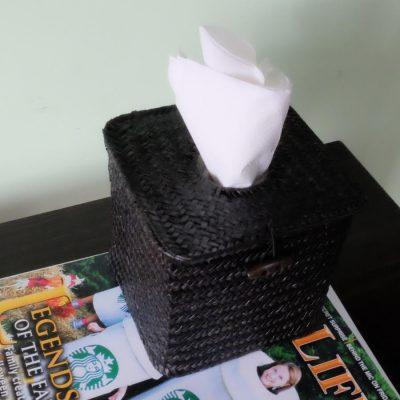 Covert Tissue Box Spy Camera