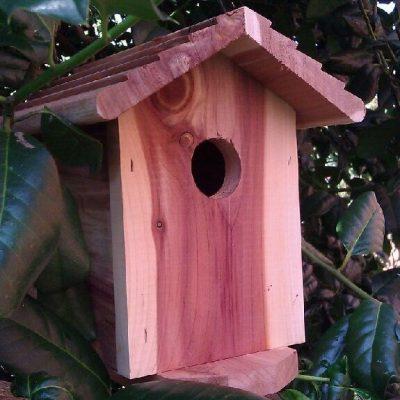 4G Birdhouse