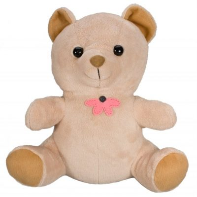 Covert Wifi Teddy Bear