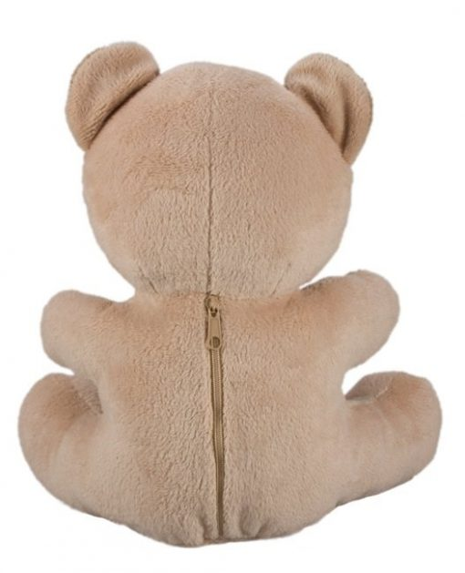 Covert Wifi Teddy Bear